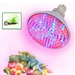 168 Red Blue LED 